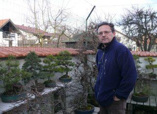 Adrian Horvat bonsai