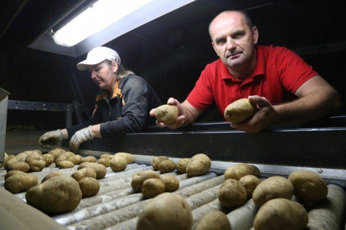 Udruga proizvođača merkantilnog krumpira Međimurja prosvjed