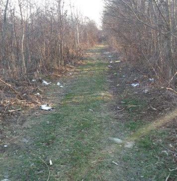 Poljsko-šumski putić u Globetki pun smeća