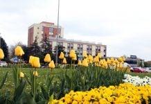Čakovec proljeće