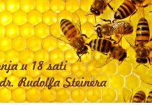 Važnost pčela u ekosustavu