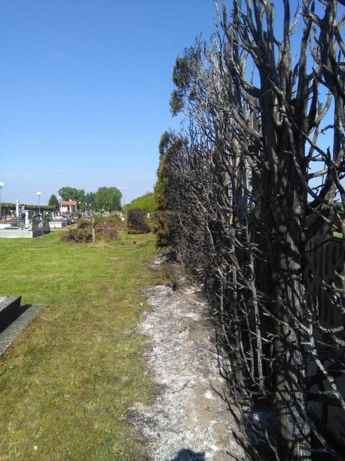 Požar groblje Hodošan