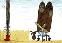 Škola animiranog filma Čakovec