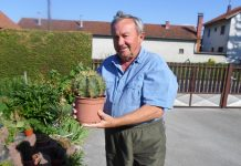 Ivan Juras kaktusi