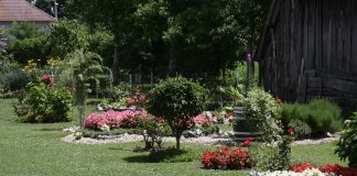 čiji je vrt najljepši