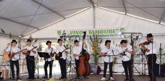 Festival zlevenke, vina i tamburice Sumarton