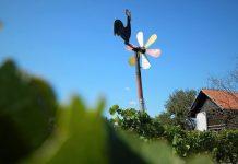 Klapotec vinograd jesen