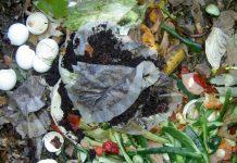 biootpad kompost smeće hrana