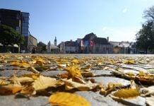 Čakovec jesen lišće