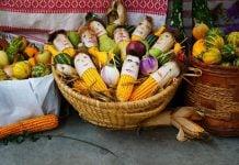 Dani zahvalnosti za plodove zemlje Nedelišće