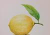 Limun osim što je odličan za zdravlje, dobar je saveznik u kućanstvu