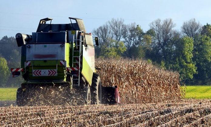 kombajn za kukuruz
