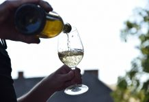 pijenje alkohol vino