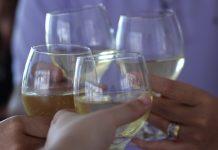 vino zdravica čaša živjeli