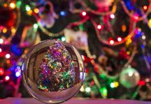 jelka bor božić ukrasi rasvjeta