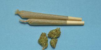 joint marihuana
