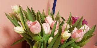 Cvijeće u kući momentalno podiže raspoloženje