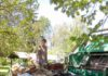 Zelena čistka Domašinca