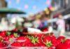 Festival cvijeća, jagoda i tradicije Čakovec