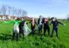 Zelena čistka Nedelišće1