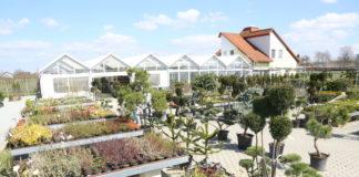 vrtni centar iva štefanec