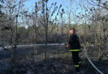 požar šume kod Črečana1