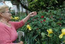 vrt marija belcic