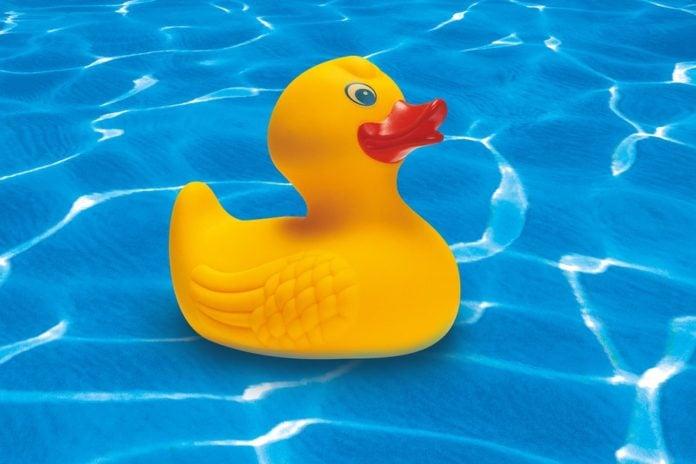 gumena patka patkica