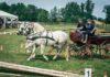 Konjičke igre Hrastovsko