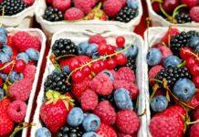 bobičasto voće malina kupina