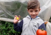 Edvin Nedeljko mali vrtlar1