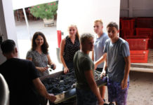 Gospodarska škola učenici praksa Španjolska1