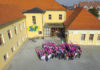 Ružičasti-listopad-Srednja-škola-Prelog