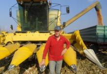 berba kukuruza-josip kranjčec
