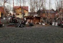 Advent Mihovljan