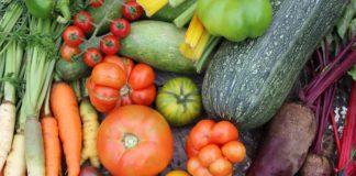 biovrt katalog biljaka