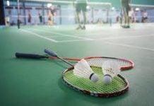badminton lions
