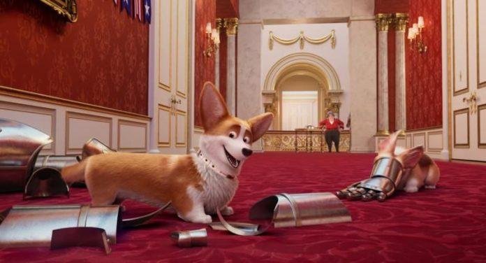 korgi kraljevski pas velikog srca