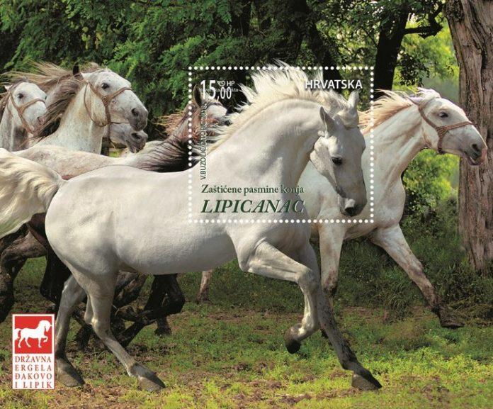 LIPICANCI_final_ir.indd