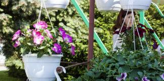 sajam cvijeća u nedelišću