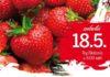 Prelog festival jagoda plakat 5.18