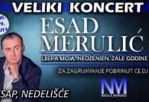 Koncert Esad Merulić