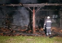 požar Hodošan štagalj8