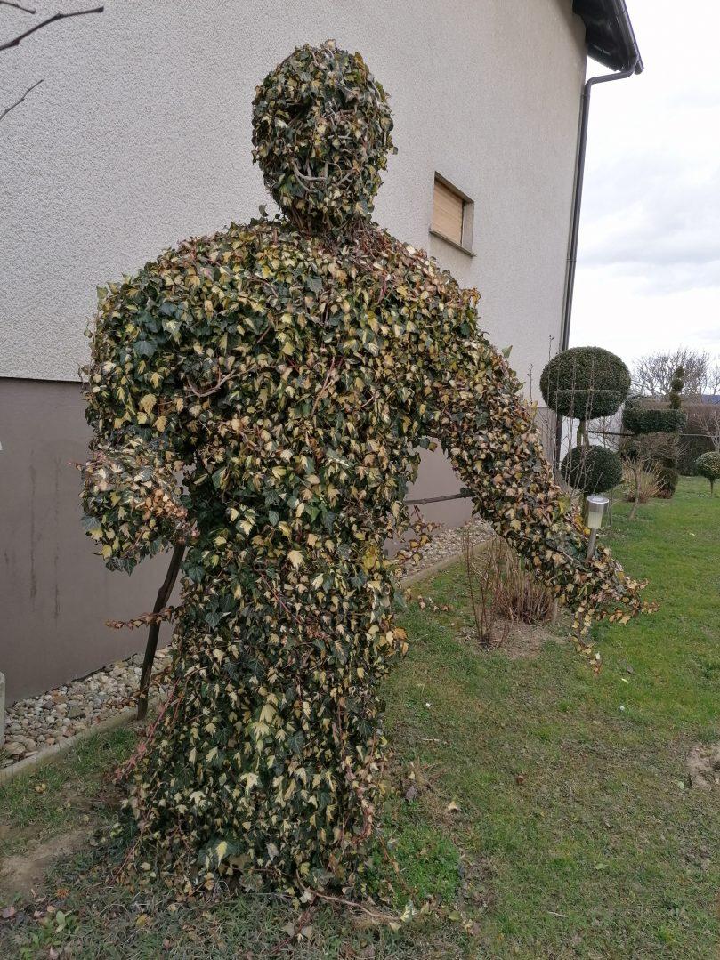 šumski čovjek 4