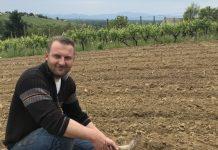 biodinamički vinograd 4