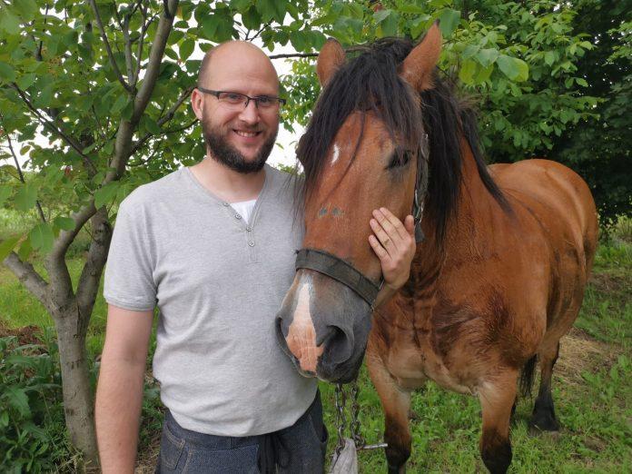 matija ladić međimurski konji