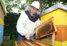 pomor pčela gardinovec zdenka horvatić129