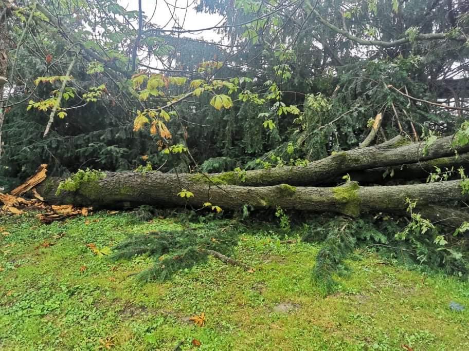 oluja u čakovečkom parku
