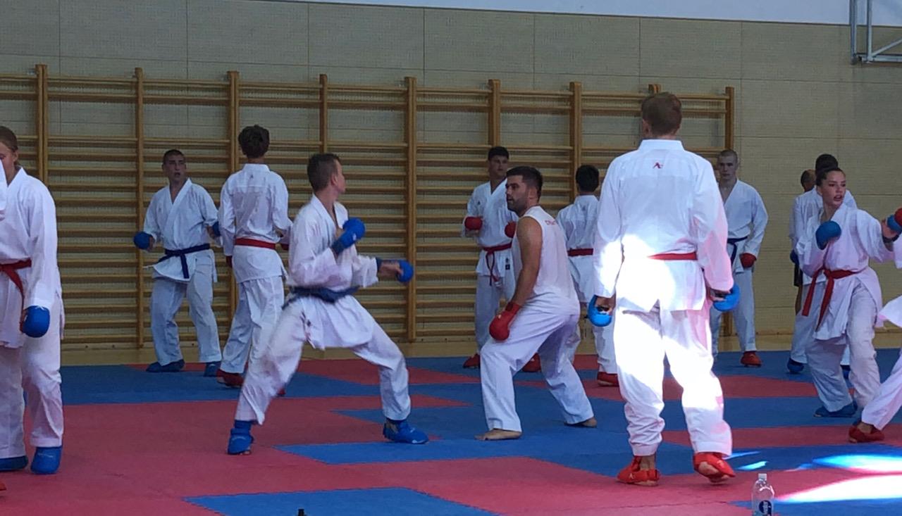 hrvatska karate reprezentacija 2