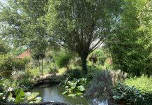 Vrt Senkovec